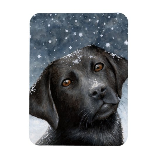 Dog 100 black Labrador Photo magnet