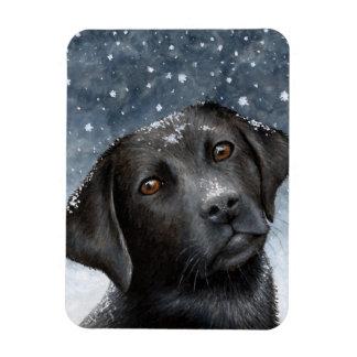 Dog 100 black Labrador Photo magnet
