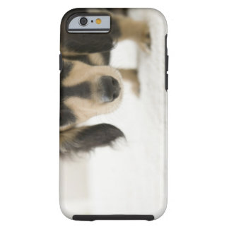 Dog 2 tough iPhone 6 case