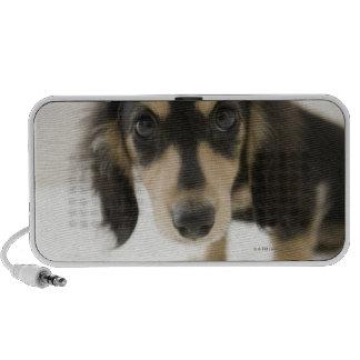 Dog 2 PC speakers