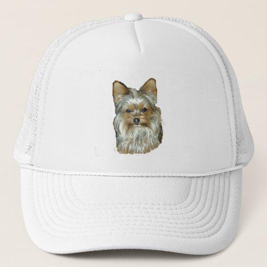 Dog 4, B, Yorkshire Terrier, Hat
