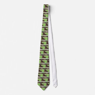 dog-782 tie