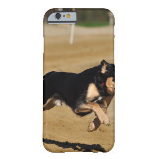 dog agility practicing barely there iPhone 6 case