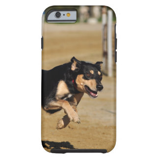 dog agility practicing tough iPhone 6 case