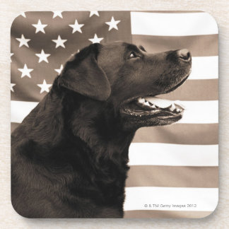 Dog and American flag Coasters