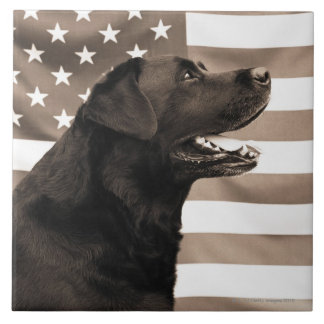 Dog and American flag Tile