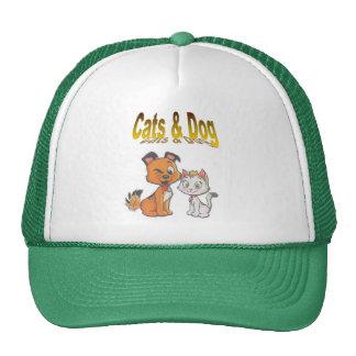 , dog and cat cap