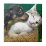 Dog and cat carreaux en céramique