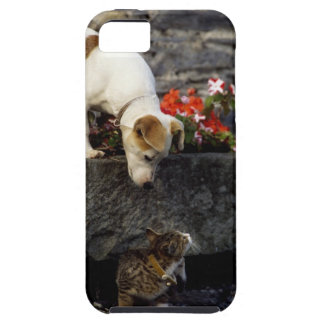 Dog and cat iPhone 5 cases