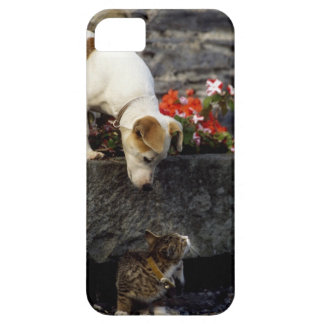 Dog and cat iPhone 5 covers