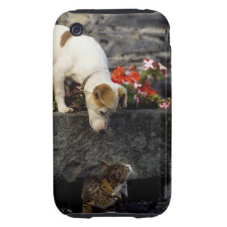 Dog and cat iPhone 3 tough cases