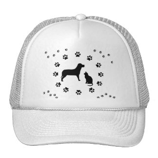 Dog and Cat Hat