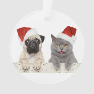 Dog And Cat In Red Christmas Hat Ornament