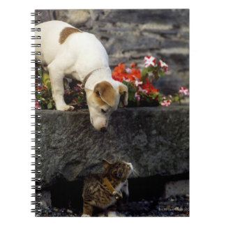 Dog and cat notebook