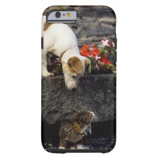 Dog and cat tough iPhone 6 case