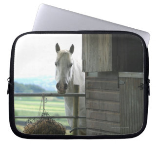Dog and horse at ranch in Menton, France Laptop Sleeve