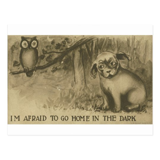dog and owl postcard