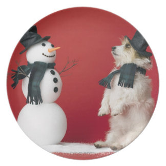 Dog and Snowman Party Plate