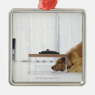 Dog and table christmas ornament