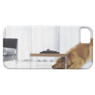 Dog and table iPhone 5 cover