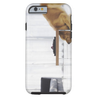 Dog and table tough iPhone 6 case