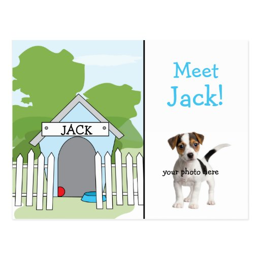 Dog Announcement - Boy Post Cards