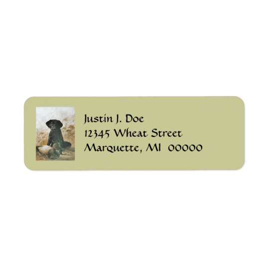 Dog Anxious Labrador & Duck Decoy Address Labels