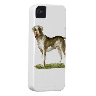 dog art gift set iPhone 4 Case-Mate case
