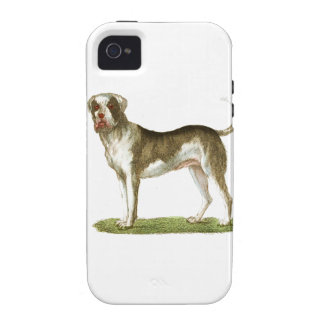 dog art gift set vibe iPhone 4 covers