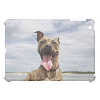 dog at beach iPad mini cover