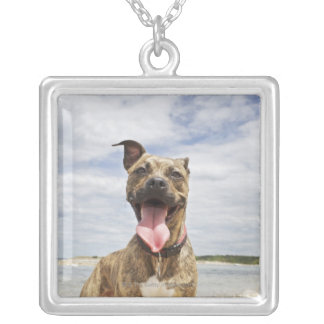 dog at beach silver plated necklace