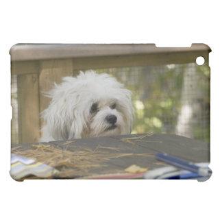 Dog at picnic table iPad mini cases