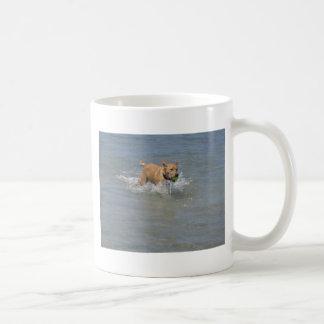 Dog at the Beach Basic White Mug