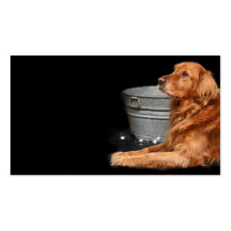 Dog bath business cards