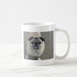 dog beach 925 2011 056 basic white mug