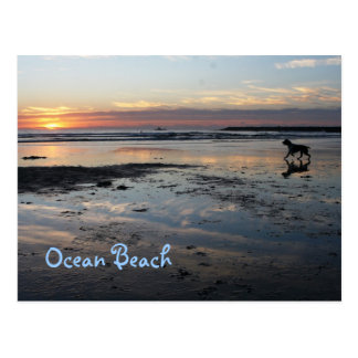 Dog Beach, Ocean Beach Postcard
