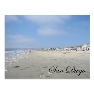 Dog Beach Postcard