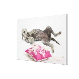 Dog behaviour training gallery wrapped canvas