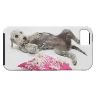 Dog behaviour training iPhone 5 case