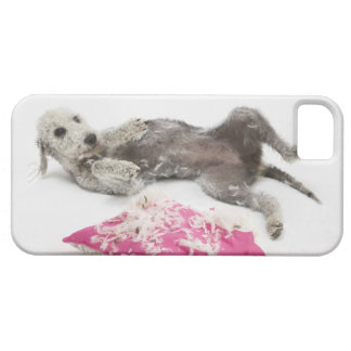 Dog behaviour training iPhone 5 cover