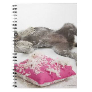 Dog behaviour training notebook
