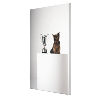 Dog beside a large silver trophy canvas print