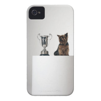 Dog beside a large silver trophy iPhone 4 Case-Mate cases