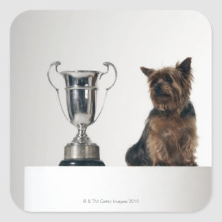 Dog beside a large silver trophy square sticker