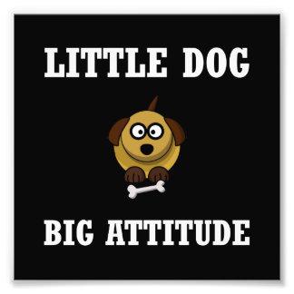 Dog Big Attitude Photo Print