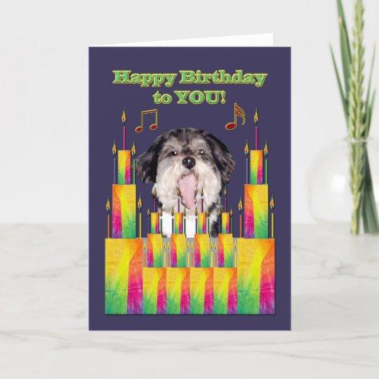 Dog Birthday Cakes Singing Card