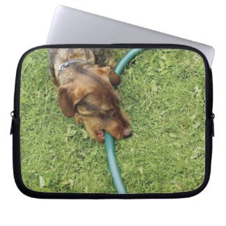 Dog biting on hose on grass and Dandelion leaves Laptop Sleeve