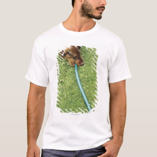 Dog biting on hose on grass and Dandelion leaves T-Shirt
