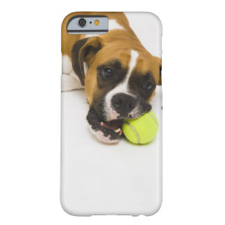 Dog biting tennis ball barely there iPhone 6 case