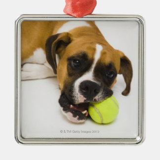 Dog biting tennis ball christmas ornament